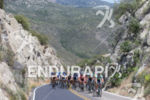 The peloton climbs the Pines to Palms Highway en route…