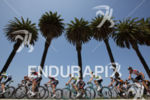 The peloton rides down a palm tree-lined road in stage…