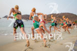 Elite Women run into the water to start the 2013…
