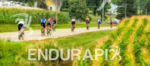 Age group athletes bike among the plentiful fields outside Madison,…