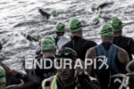 Athletes begin the swim leg at the 2017 Ironman Santa…